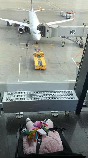 Бубачка отправилась в первое путешествие в ДубайФото: «Инстаграм»